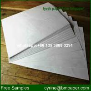 China 1025D Tyvek Paper Rolls on sale