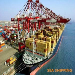 China Shipping Containers China To California USA DDP Sea Freight on sale