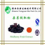 China Natural fruit extract Juice powder Mulberry Extract, Mulberry juice powder, Mulberry coarse powder, Anthocyanin on sale