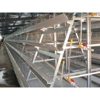 Quality Battery Cage for sale