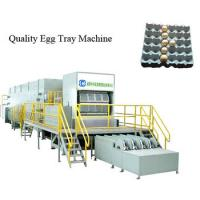 Quality Large Capacity Double Rotary Egg Tray Machine Full Automatic Factory Price for sale