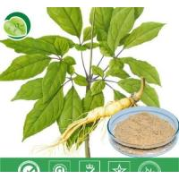 Quality Manufacturer Pure Natural High Qulity Suma Extract, Pfaffia Paniculata Extract, Brazilian Ginseng Extract for sale