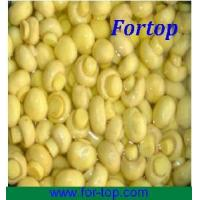 Quality Champignon Whole in Drum for sale