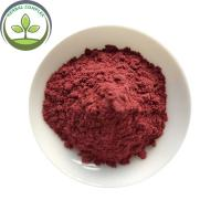 Quality Best Selling Products Organic Acai Berry Powder In Bulk Stock for sale