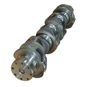 Quality 881mm Length Diesel Engine Crankshaft Automotive Engine Parts W06D Billet Crankshaft Stroke X3310211 for sale