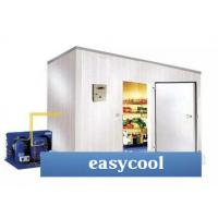 Quality Customized Size And Materials Insulated Panel Ice Storage Cold Room For Food Or Industrial Storage for sale