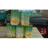 Quality Factory Price NEW SEASON FORTOP BRAND Canned Mushroom Whole in Brine N.W.800G,D.W.400G for sale