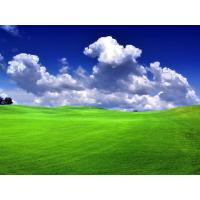 Quality Look the most popular artificial lawn used for landscaping,artificial sports turf for sale