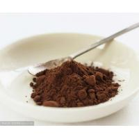 Quality Professional Unsweetened Alkalized Cocoa Powder Bitter 10-12% HACCP Light Brown To Dark Brown Powder for sale