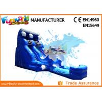 Quality Attractive Blue Cartoon Outdoor Inflatable Water Slides For Kids and Adults for sale