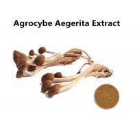 Quality Organic Agrocybe Mushroom Extract Powder Anti - Aging, Medicinal Mushroom Extract Powder Cancer Treatment for sale