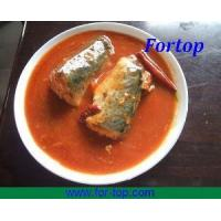Quality Canned Mackerel in Oil, Brine, Tomato Sauce, Chili for sale