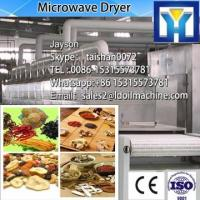 China New design conveyor type sterilizing and dryer microwave vacuum drying oven     microwave vacuum drying equipment on sale