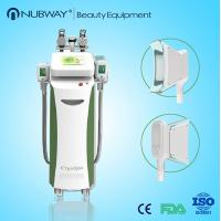 China New product ideas anticongelante membrana kryolipolyse cryolipolysis on sale