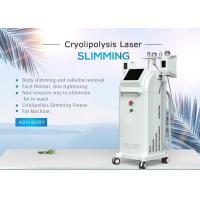 Quality Water + Air Cooling  10.4 Inch Cryolipolysis Slimming Machine With 5 Handles 1800W for sale