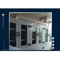 Quality Industrial Flammable Storage Cabinet  Laboratory Safety For Cleanroom for sale