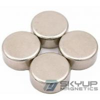 Quality N38 Quality Disc Neodymium Magnets/Rare Earth Neo Ndfeb with different dimension for sale