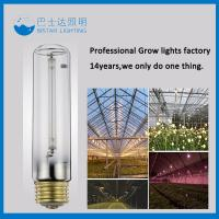 Quality high pressure plants grow sodium lamp and low pressure sodium lamp for sale
