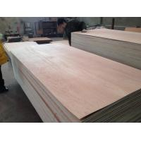 Quality okoume f/b,hardwood core e0 glue plywood for sale
