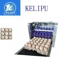 Quality Clear Egg Inkjet Coding Printer With Unique Spray Hole Alignment Function for sale