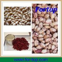 Quality Light Speckled White Kidney Beans for sale