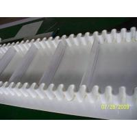 Quality Sidewall conveyor belt for food industry from China factory for free samples for sale