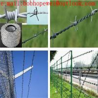 Quality barbed wire fencing south africa/barbed iron wire/barbed wire project/wholesale barbed wire fencing/barbed wire fence for sale