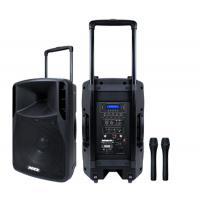 Quality Portable 12 Inch Professional Audio Speakers 38mm 2 way Loudspeaker Painted box for sale