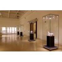 Quality Vision free standing hinged door laminated glass display cases F-04 for sale
