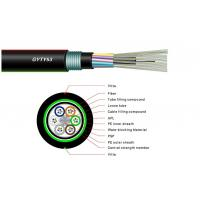Buy 12 Core Single Mode Fiber Optic Cable , Armoured Outdoor Cable GYFTY53 OEM at wholesale prices