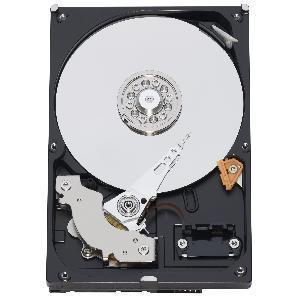 Quality OEM Caviar Blue 500 GB SATA III 7200 Rpm 16 MB Cache Bulk/OEM Desktop Hard Drive - OEM5000AAKX for sale