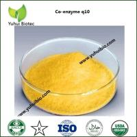 China halal coenzyme q10,plant extraction coenzyme q10,raw material coenzyme q10 on sale