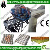 Quality automatic egg tray making machine with good compete for sale
