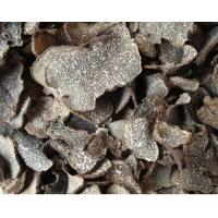 Quality Truffle for sale