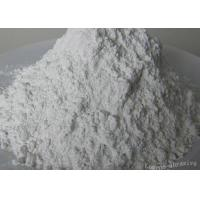 China White Fused Aluminum Oxide Micropowder WA P360,for Precision Treatments on sale