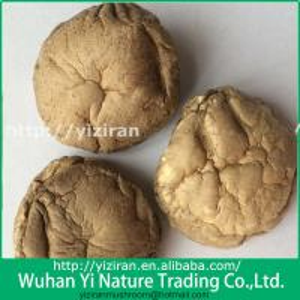 China Wholesale Shiitake Mushroom Dried on sale