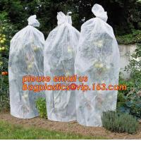 Quality PP Non Woven Fabric Fruit Tomato Banana Bunch Cover Garden Plant Protection Cover For Winter,Eco-friendly Household Non for sale
