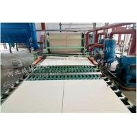 China High Strength Mineral Fiber Ceiling Board Production Line ISO CE Certification on sale