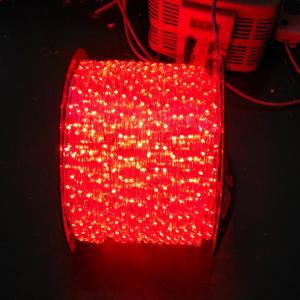 Quality 110V /220V led rope light for sale