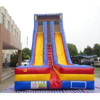 Quality 0.55mm PVC vinyl material used inflatable slide, 7m high inflatable fun slide inflatable dry slide for children for sale