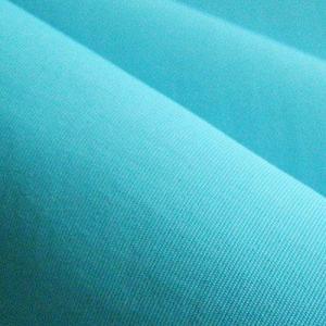China Taslon Fabric,Nylon Taslon Fabric on sale
