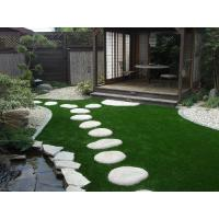 Quality Putting greens grass for sale