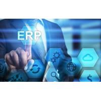 China Advanced Erp System Software , Erp Accounting Software For Window Operating System on sale