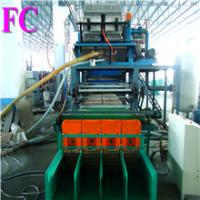 China Paper Pulp Molding Egg Tray machine / CE on sale