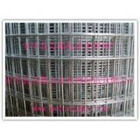 Quality Zinc galvanized steel mesh Welded wire mesh for sale