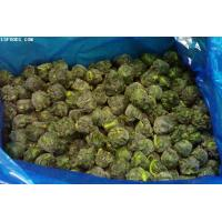 Quality Frozen Spinach Ball for sale