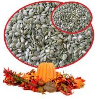 Quality Pumpkinseeds kernels for sale