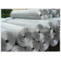 Quality Welded Wire Mesh Galvanized Welded Wire Mesh for sale