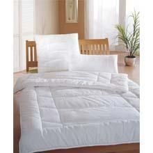 Buy Blanket Polyester Fiber Quilt at wholesale prices