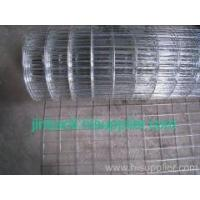Hot Dipped Galv Welded Wire Mesh